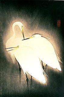 Hashimoto, Snowy Herons