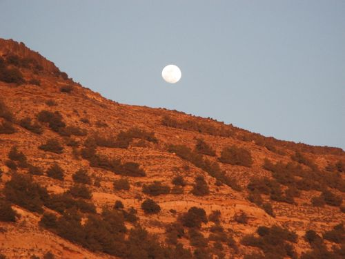 Moon rising in Dana