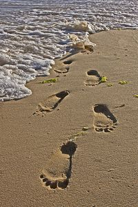 Footprints in the sand, waves