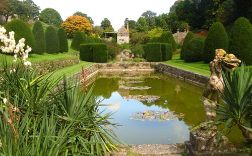 Mapperton - the lowerJacobean pool