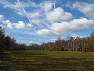 Skyscape near Spring Park