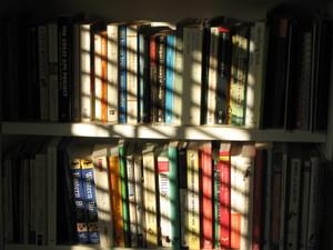 Sun_blinds_books