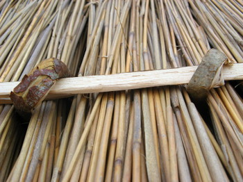 Thatch_6_reeds_held_in_place