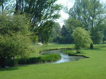 Coln_valley_trees_gloucs
